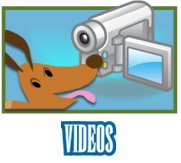Stockton Dog Training Videos-image.