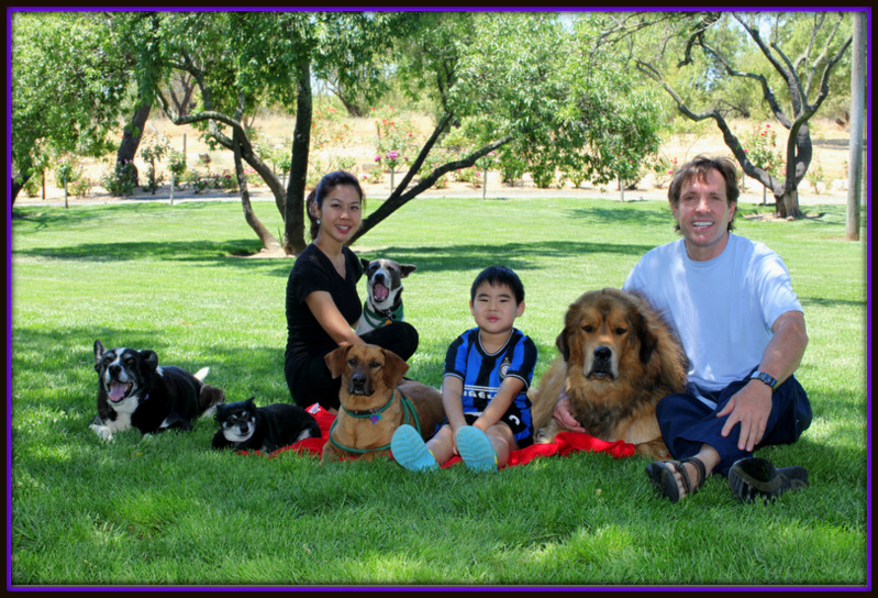 David Baron's Superdog trainers is the best dog aggression trainers in Stockton California-image.